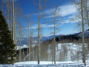 Utah to Spring School Events 2013 065